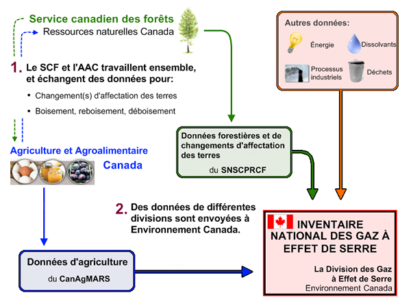 Diagramme des arrangements institutionnels pour la rédaction du rapport d'inventaire national.