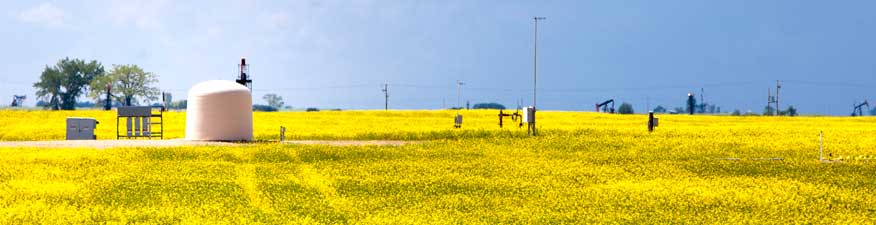Carbon storage unit surrounded by a canola field